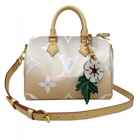 Louis Vuitton Speedy 25 Bandouliere Mist Complete with Box, Receipt and Dust bag